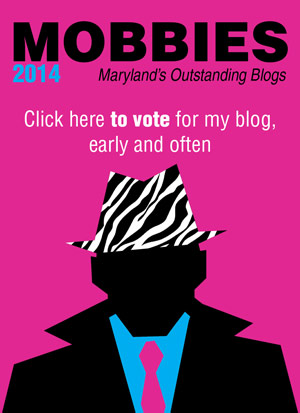 vote for my blog in the mobbies early and often